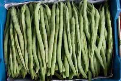 Easy Green Beans Recipes