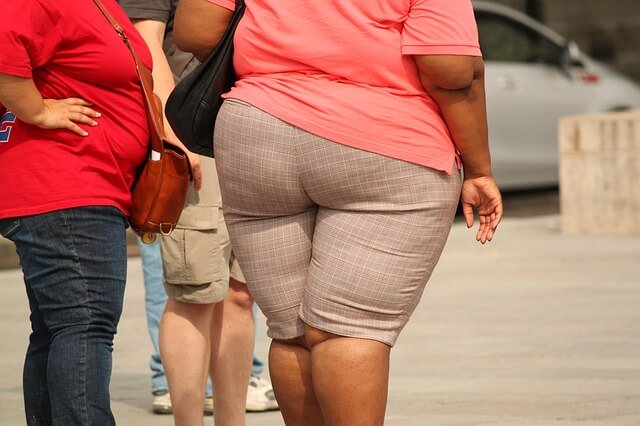 research on obesity